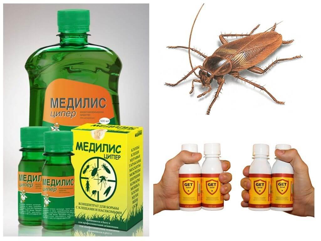 Чем в домашних условиях травить тараканов