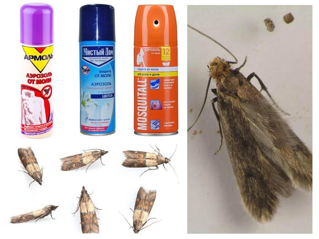 Как избавится от тараканов не навредя домашним питомцам