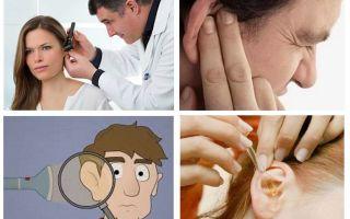 Что делать, если таракан залез в ухо
