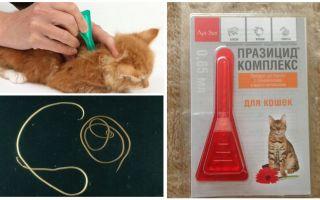 Празицид комплекс для кошек и котят