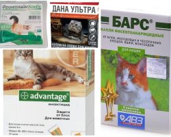 Капли на холку от блох для кошек и котят