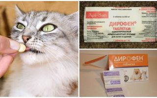 Таблетки Дирофен и Дирофен плюс для кошек и собак