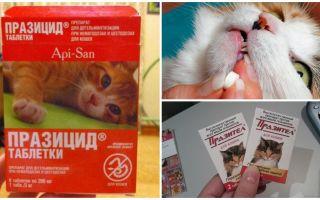 Таблетки Api San от глистов для кошек