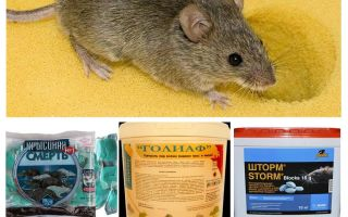 Отрава от мышей