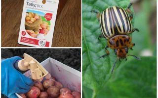 Когда и чем опрыскивать и обрабатывать картофель от колорадского жука