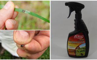 DR Klaus от клещей и муравьев