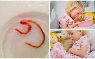 Паразиты у ребенка: признаки и лечение