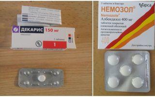 Что эффективнее: Немозол или Декарис