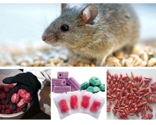 Яд для крыс и мышей