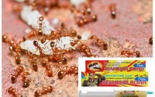 Средство Великий воин от муравьев