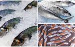 Как уничтожить описторхоз в рыбе