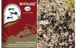 Мурацид от муравьев
