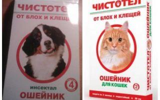 Ошейник Чистотел от блох для кошек и собак