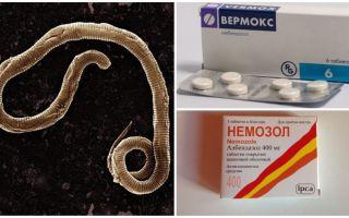 Препараты от паразитов в организме человека широкого спектра действия