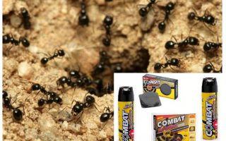 Средства Combat от муравьев