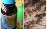 Средство Дачник от муравьев