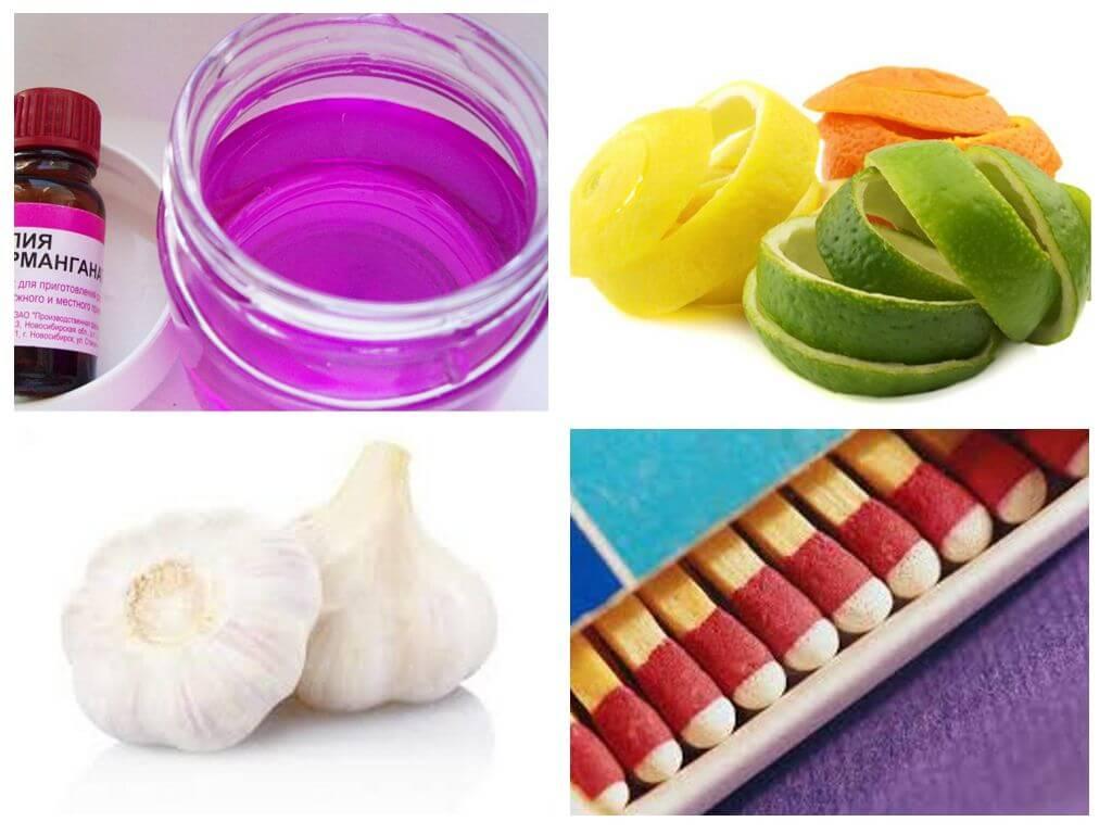 Как избавиться от цветочных мошек в цветах