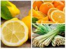 Лимон, апельсин и лемонграсс