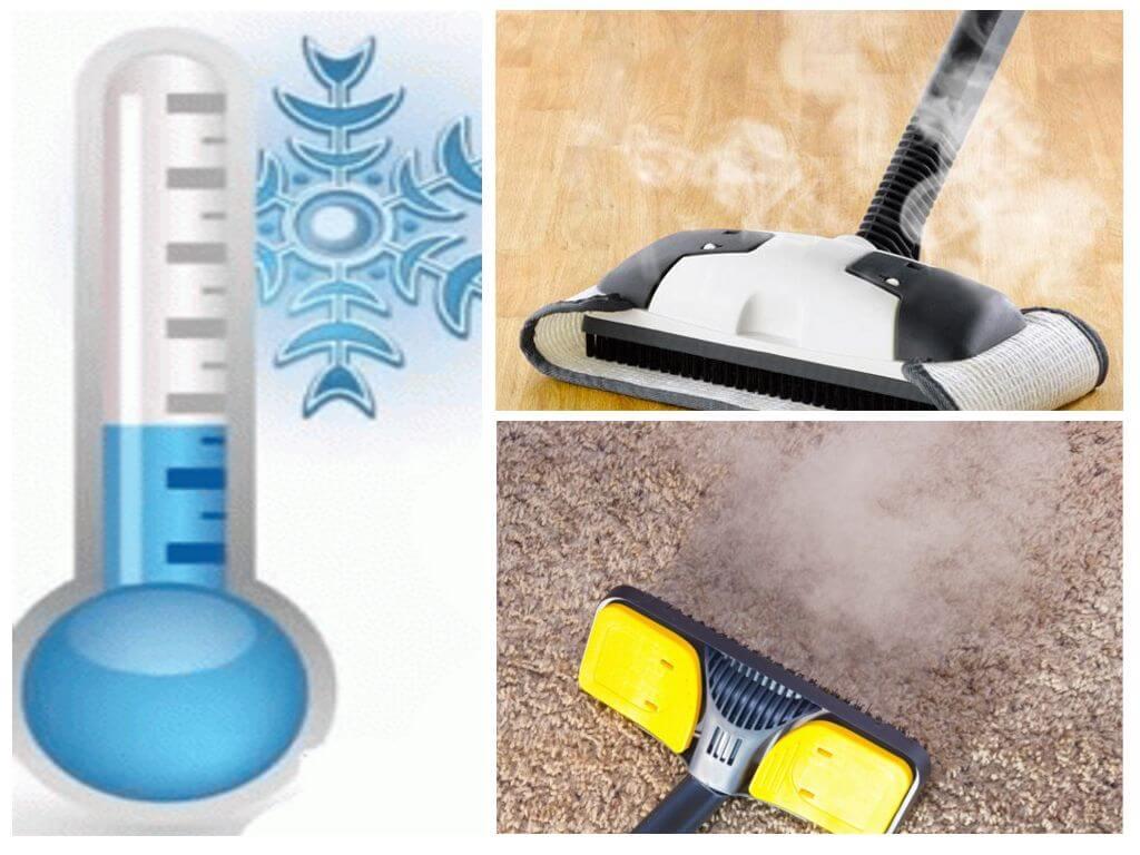 Как избавиться от ковровых блох инсектицидными и подручными средствами