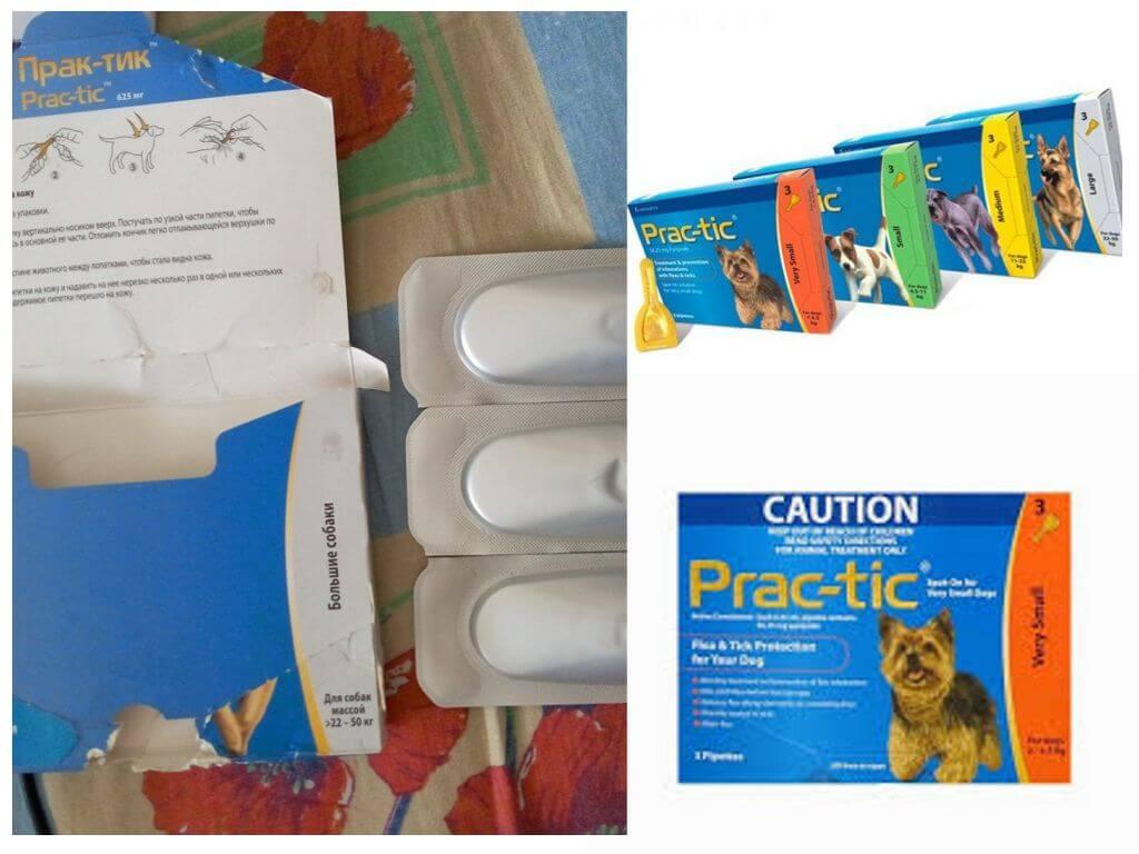 Практик (practic) капли для собак от клещей и блох.