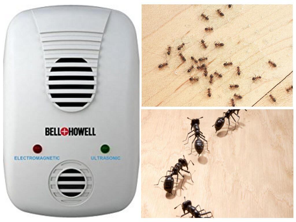 Ультразвуковой отпугиватель от муравьев отзывы ультразвуковые отпугиватели грызунов купить в казани
