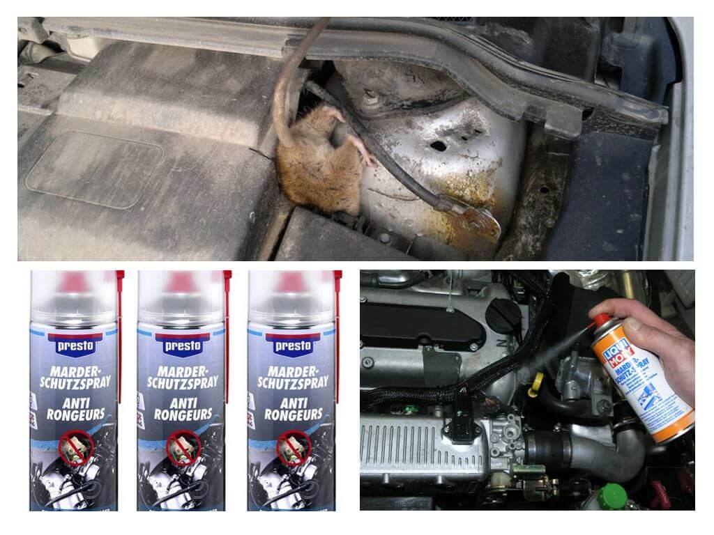 Средство от крыс для автомобиля