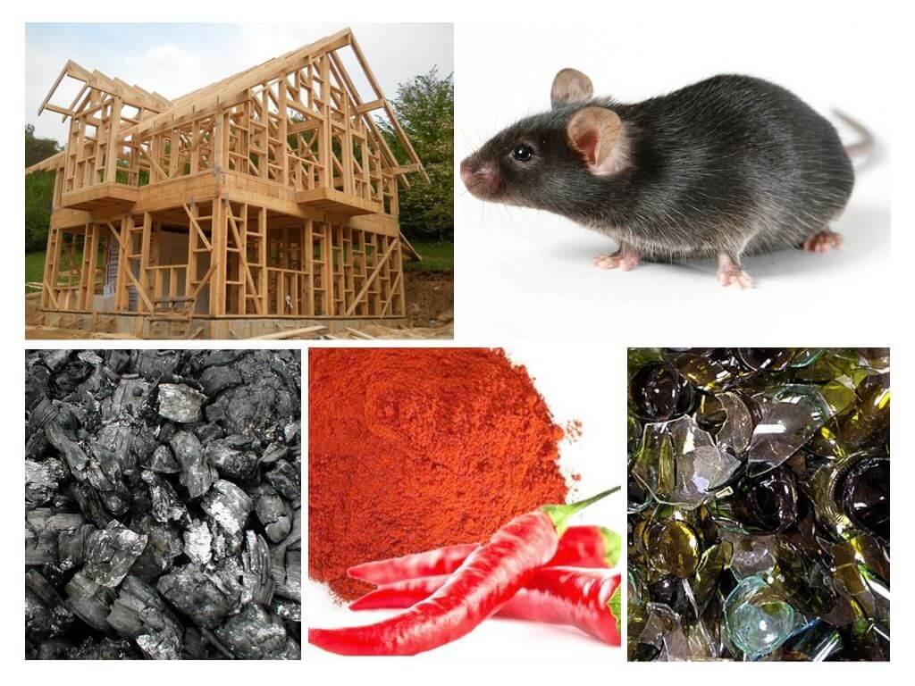 Защита каркасного дома от мышей