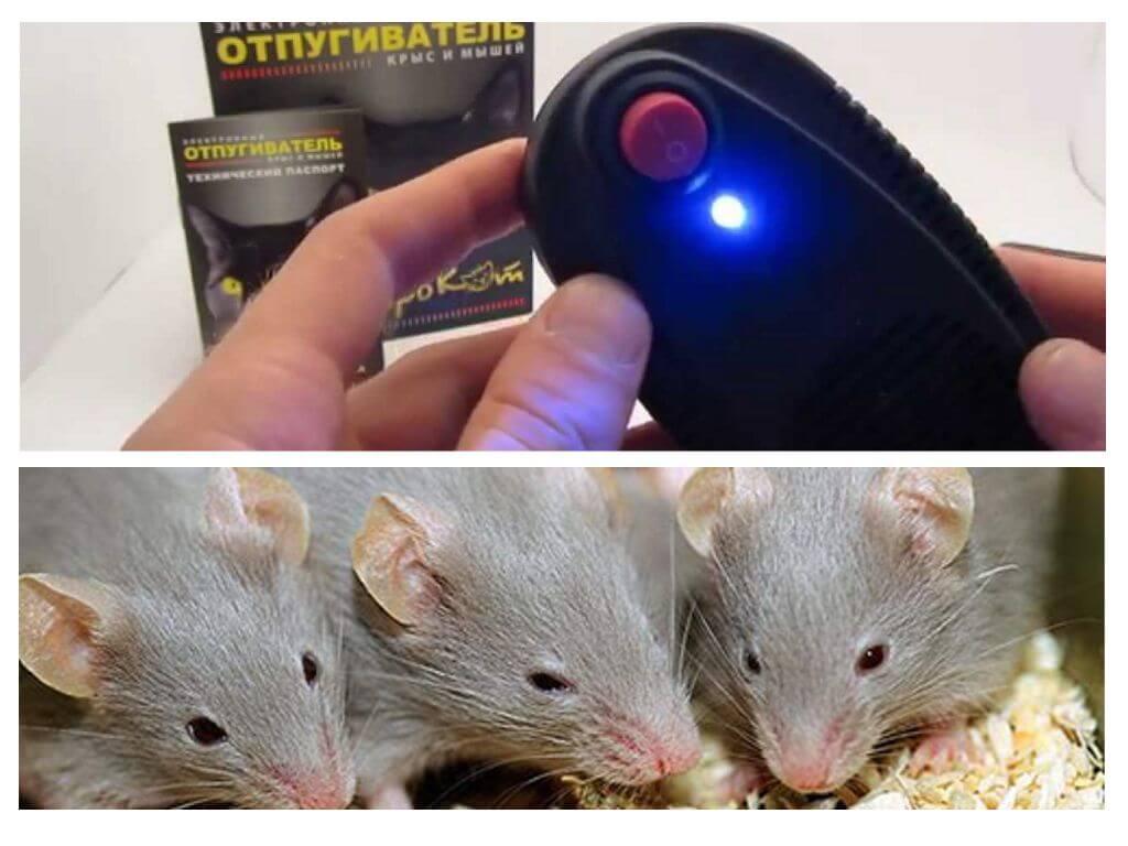 Отпугиватель мышей и крыс Электрокот