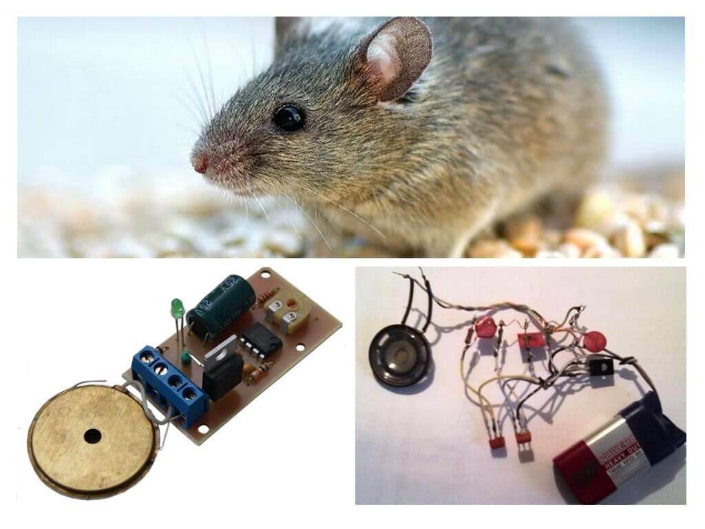 ультразвуковой отпугиватель мышей самодельный