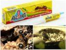 Абсолют от муравьев