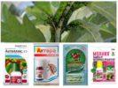 Химические препараты для борьбы с вредителями