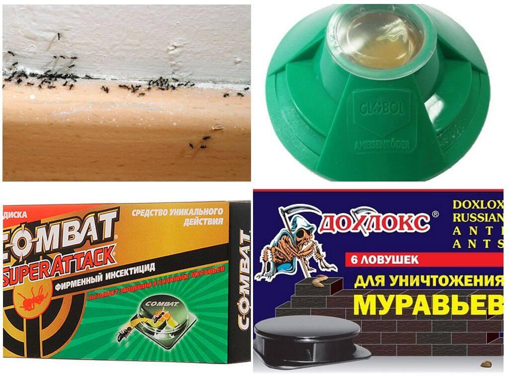 Как избавиться от комаров в квартире: лучшие средства