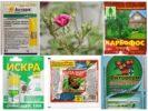 Ядохимикаты для защиты растений