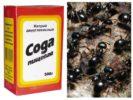 Сода в борьбе с муравьями