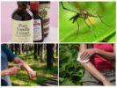 Средства от комаров на основе ванилина