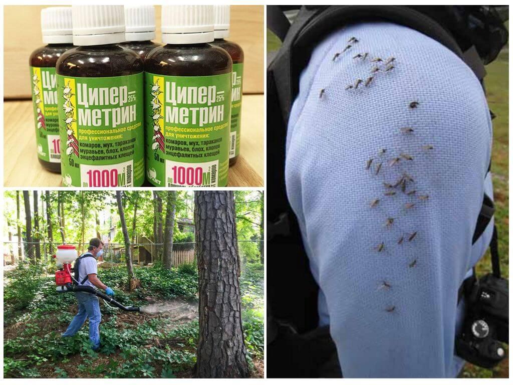 Циперметрин в борьбе с летающими насекомыми