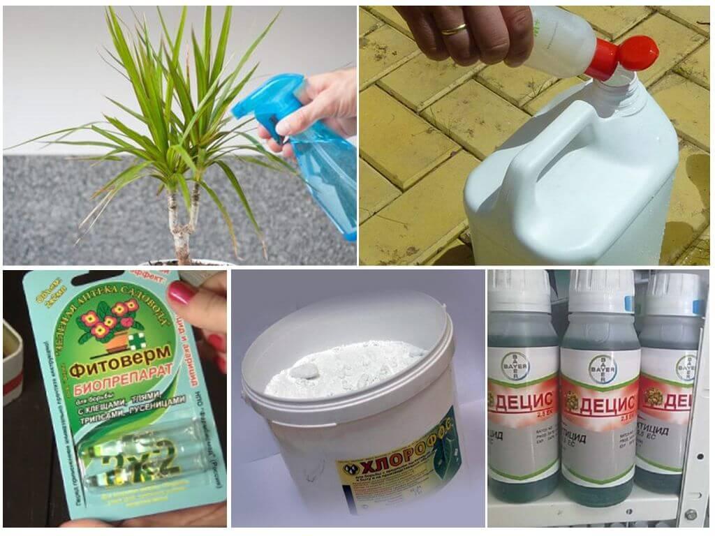Химические средства для борьбы с вредителями