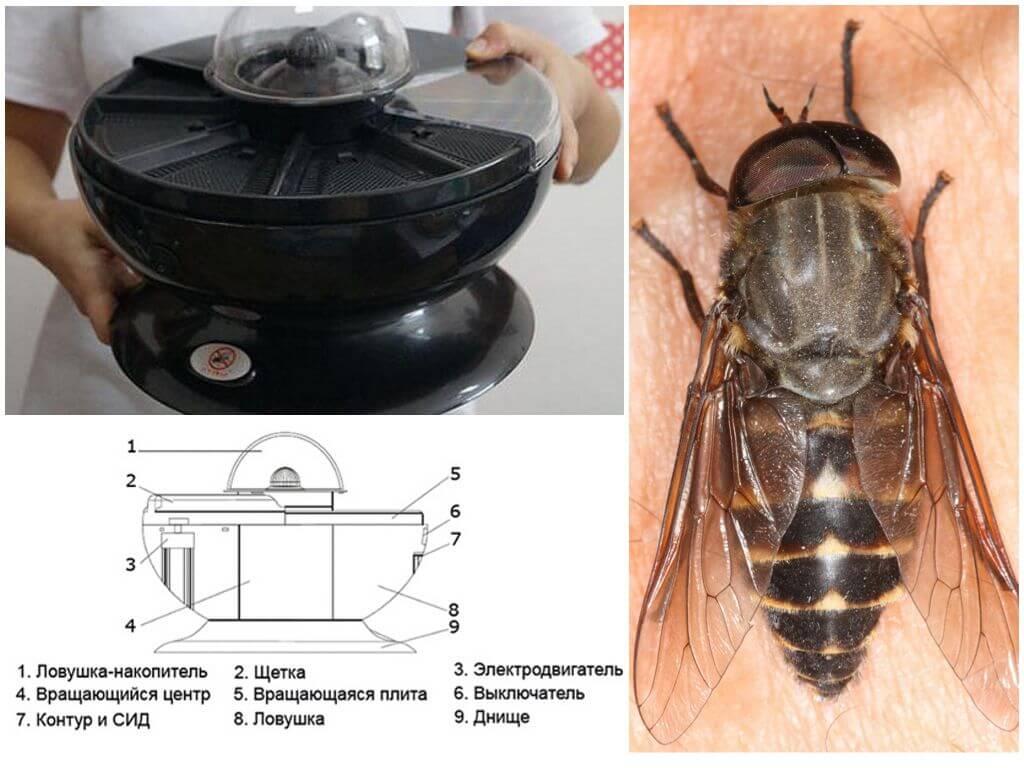 Ловушка Mosquito Trap FC 001