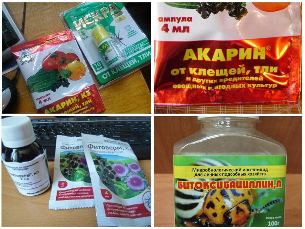 Биопрепараты против колорадских жуков