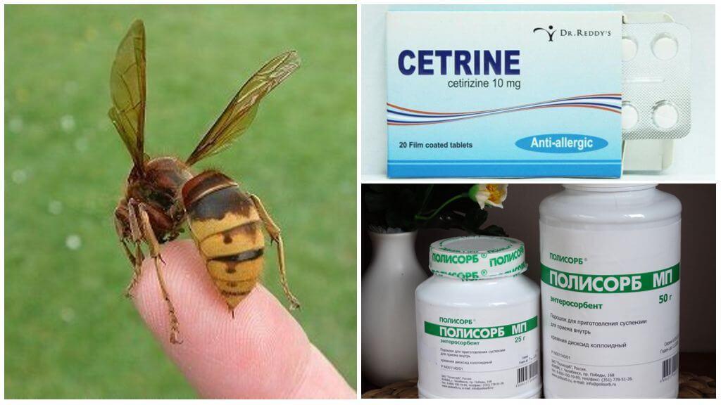Лекарства для аллергиков