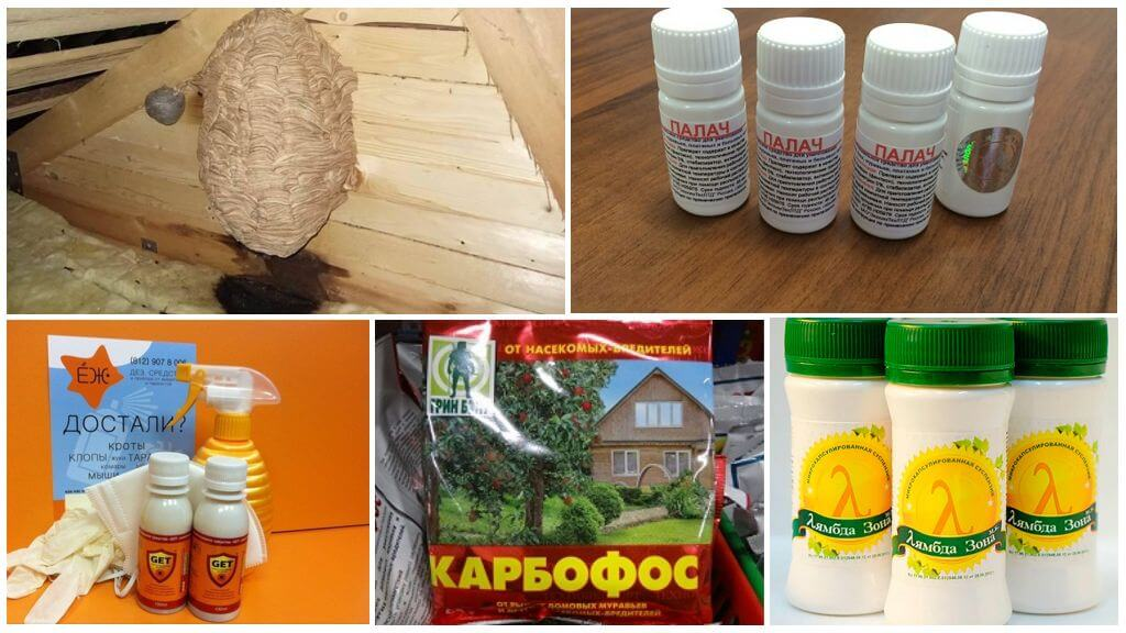 Препараты для уничтожения гнезда шершней