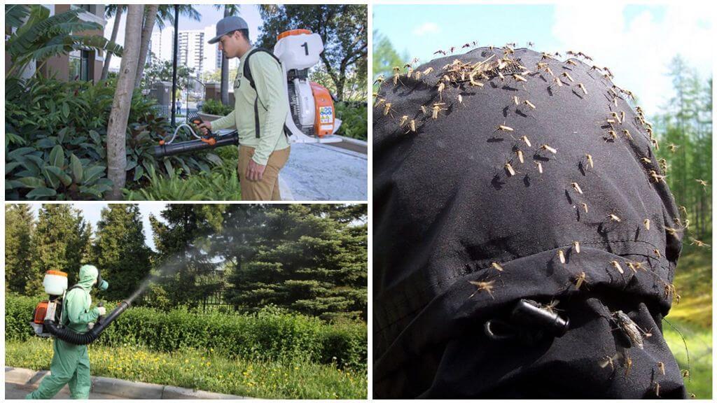 Профессиональная обработка территории от комаров
