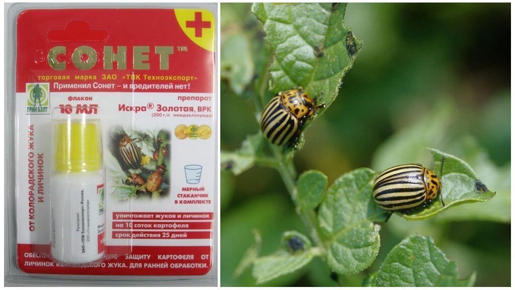 Средство от колорадского жука Сонет