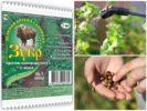 Отрава Зубр от колорадского жука