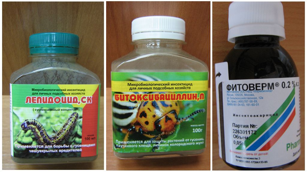Биопрепараты против шелкопряда