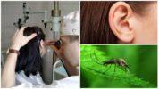 Комар в ухе