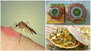 Методы борьбы с комарами