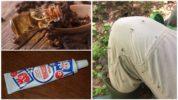 Крем от комаров с маслом гвоздики