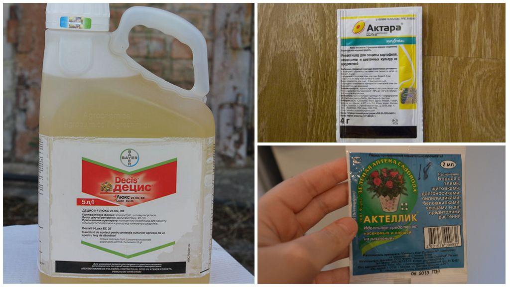 Химические препараты от капустницы