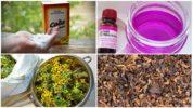 Народные методы борьбы с гусеницами